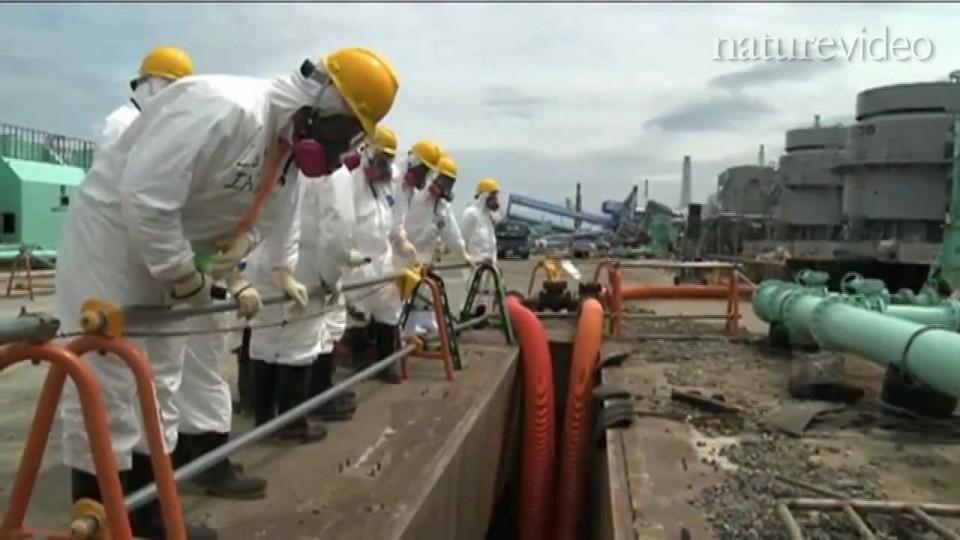 福島原発事故から半年