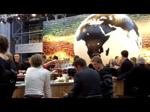 A climatologist's take on Copenhagen