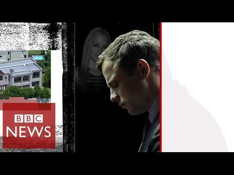 'Before I knew it I fired 4 shots' – Pistorius Trial – BBC News