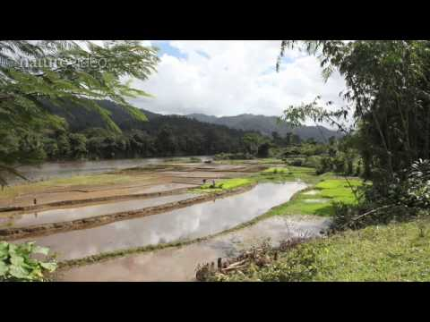 Climate change: Madagascar – by Nature Video