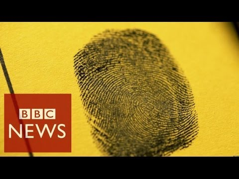 Fingerprints' hidden secrets – Click – BBC News