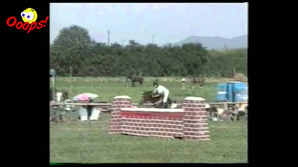 Funny Animals – Funniest HORSE Riding Falls