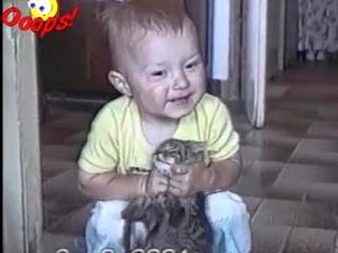 Funny Animals – Funny Animals Caught on Tape