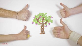 Handing on a sustainable future