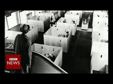 How did we end up working in cubicles? – BBC News