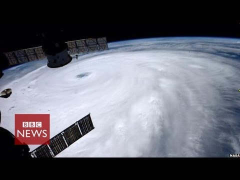 Japan typhoon Neoguri winds 'up to 175 kmph' – BBC News