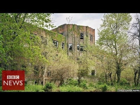 New York's abandoned island – BBC News