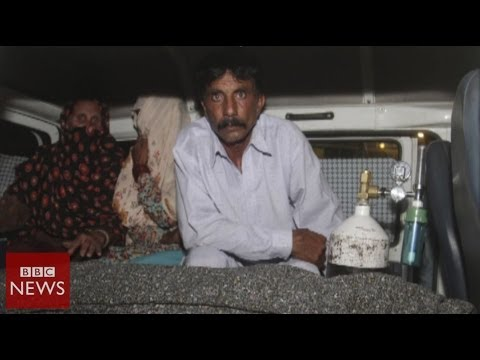 Pakistan stoning: Pregnant woman killed by family for marrying for love – BBC News