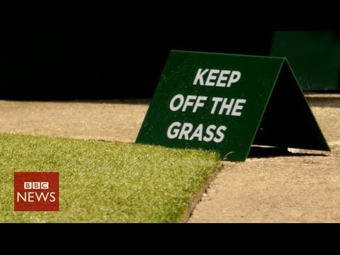 The man behind Wimbledon's grass – BBC News