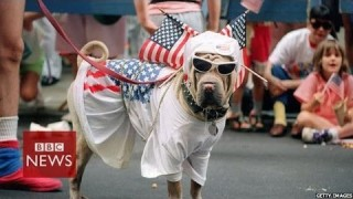 What do Americans really think about US on Independence Day – BBC News
