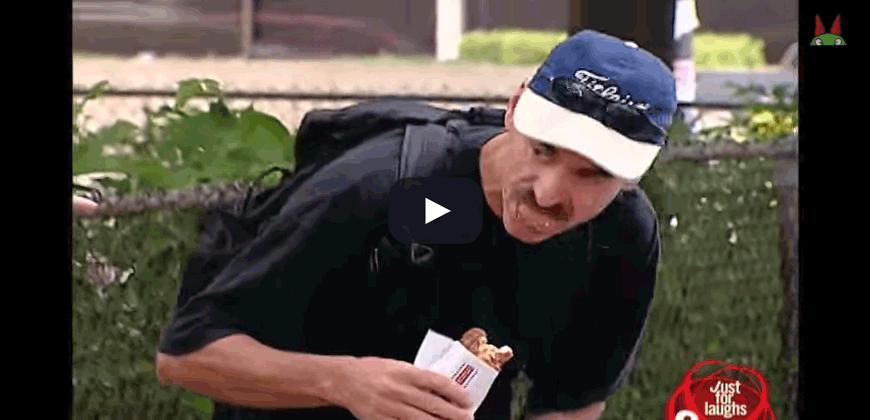 Hot Dog,  sta per salsicciottto di … cane ?