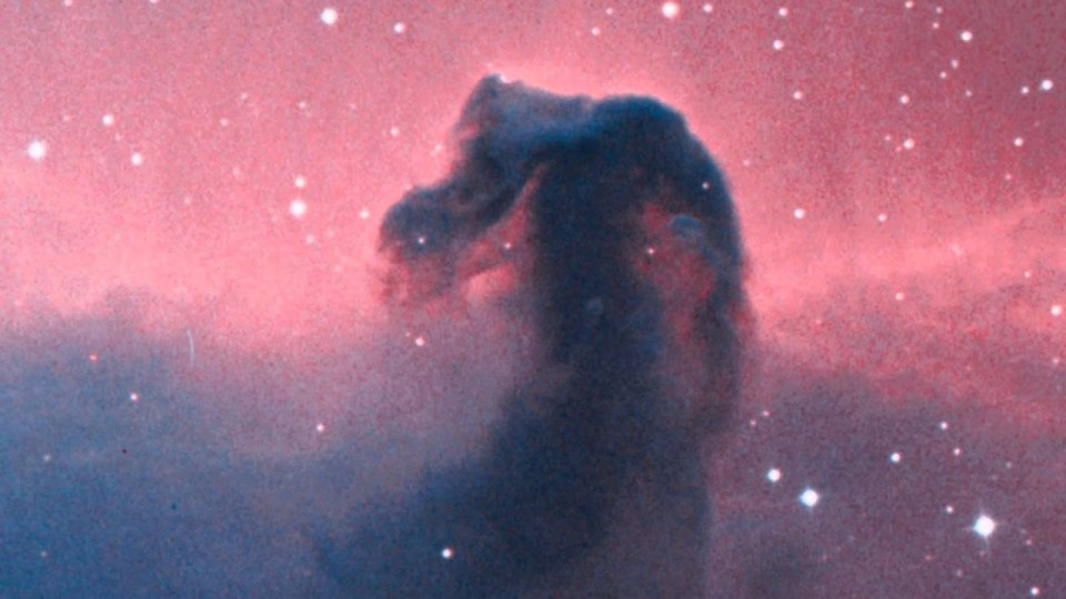 The Horsehead Nebula in a New Light: Infinite Minute #10