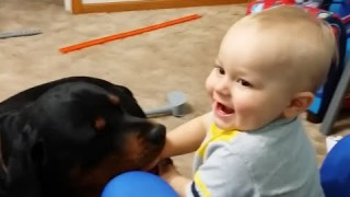 Funny Babies Talking to Dogs Compilation 2014 [NEW HD]