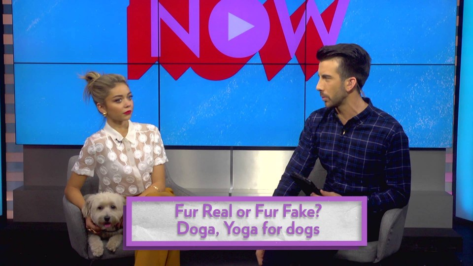 PEOPLE Now: Modern Family's Sarah Hyland plays 'Fur Real or Fur Fake'