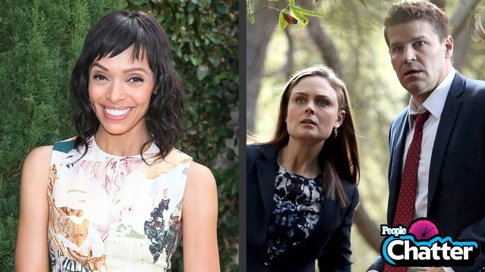 Bones Star Tamara Taylor Has a Celeb Crush – and She's Revealing It Here | Chatter | PEOPLE