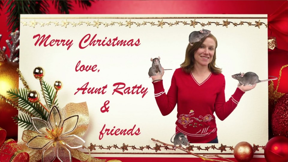 Crazy Aunt Meets Santa | Episode 1 | Waiting For Santa | PEOPLE