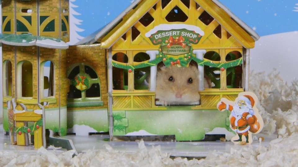 Day 10: Christmas Town – Cute Hamsters: 12 Days of Christmas