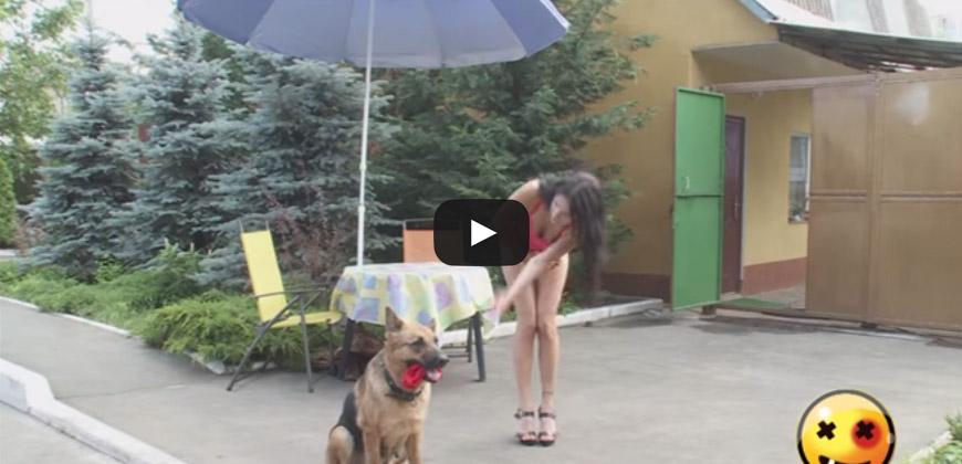Il cane le ruba gli slip e chiede aiuto