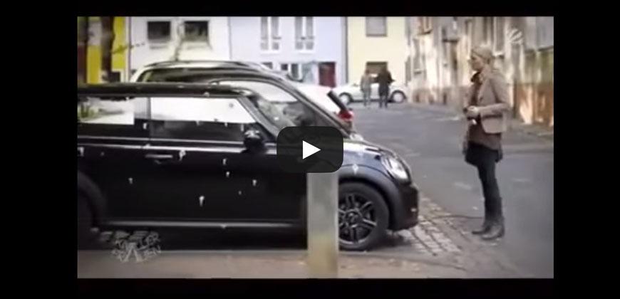 Trova l'auto tutta defecata dai piccioni e si vendica così …