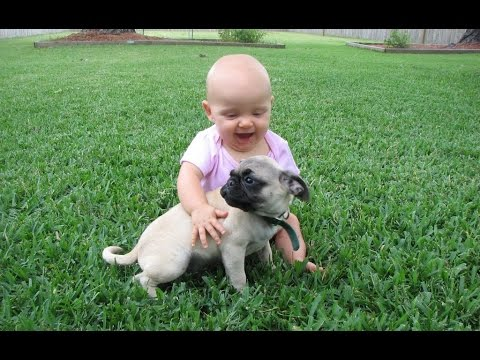 Cute Dogs and Adorable Babies Compilation 2015 [NEW HD]