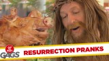 Resurrected Animals Pranks – Best of Just For Laughs Gags