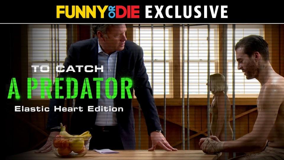 To Catch A Predator: Elastic Heart Edition